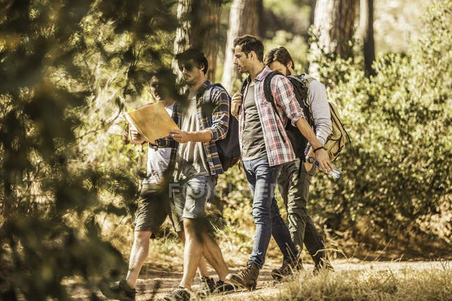 focused_180533734-stock-photo-four-male-hikers-reading-map.jpg